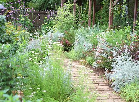 緑豊かな庭にしたい