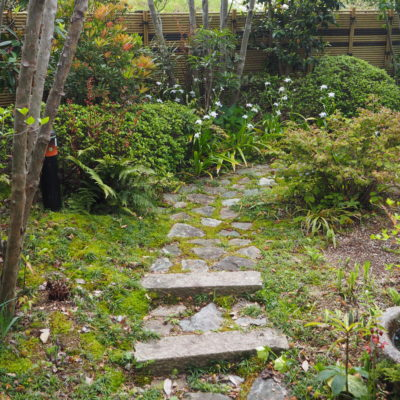 木漏れ日の中を散策する庭